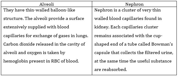 Ncert Solutions For Class 10 Science Life Processes Part 2