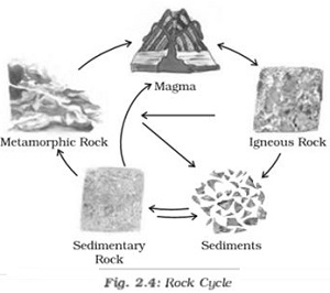 NCERT Solutions for Class 7 Social Science Inside our earth
