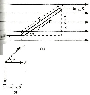 Magnetism and Matter class 12 Notes Physics   myCBSEguide   CBSE