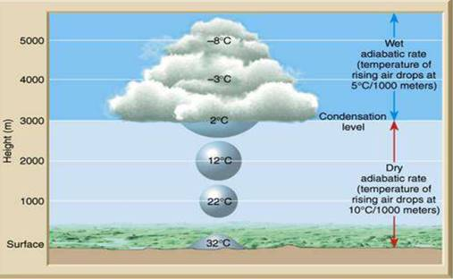 Water in the Atmosphere class 11 Notes Geography