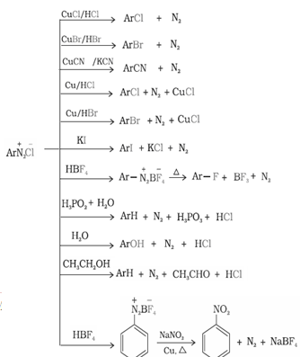 Amines Class 12 Notes Chemistry | myCBSEguide | CBSE Papers